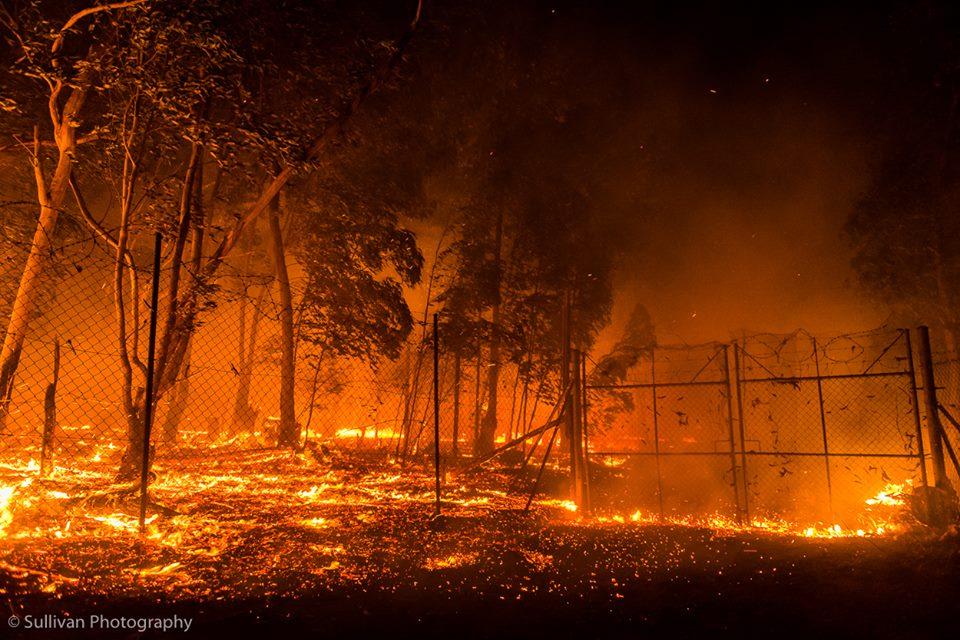 Vuur verwoest natuur in de Helderberg